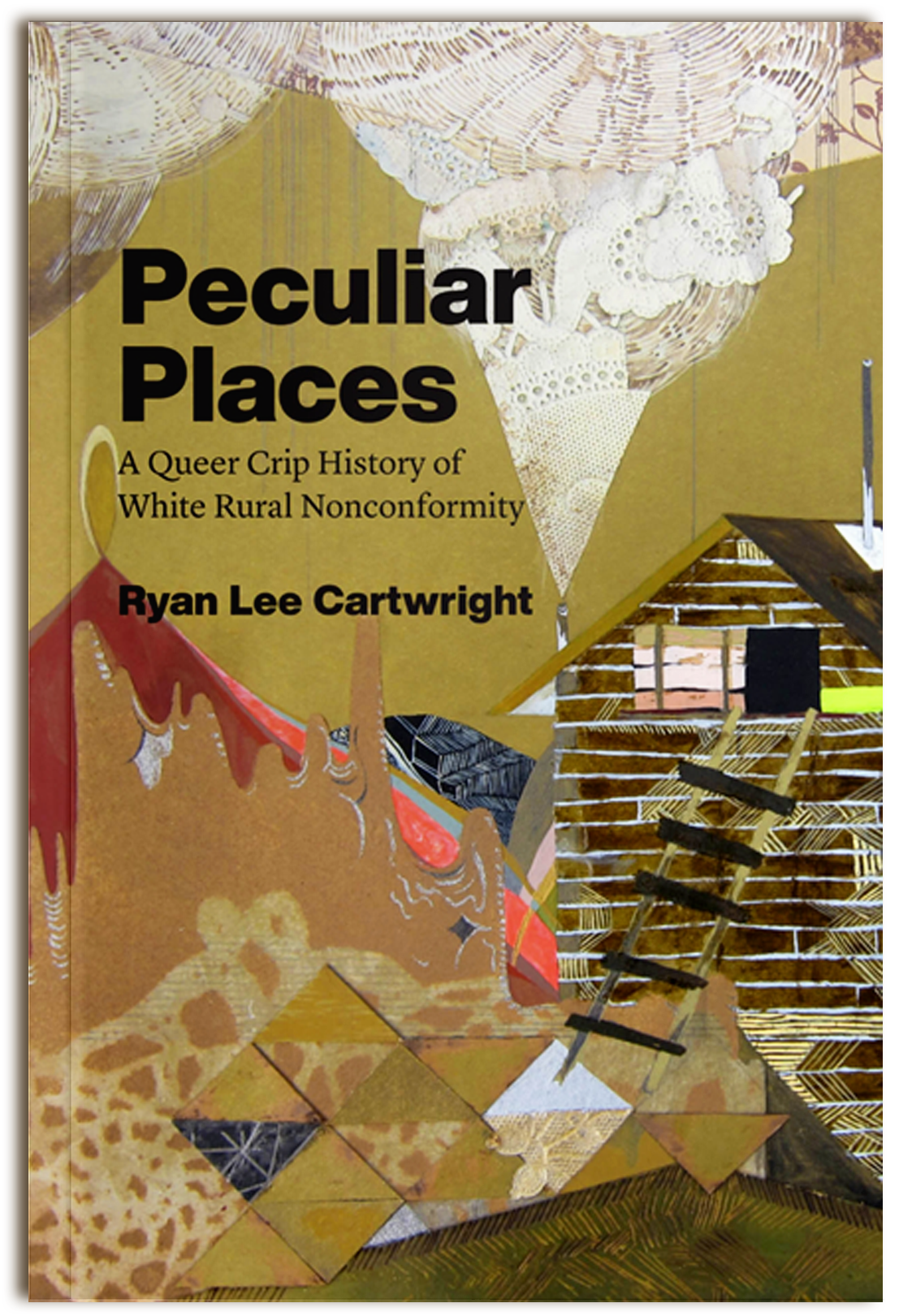 Book cover of Peculiar Places by Ryan Lee Cartwright